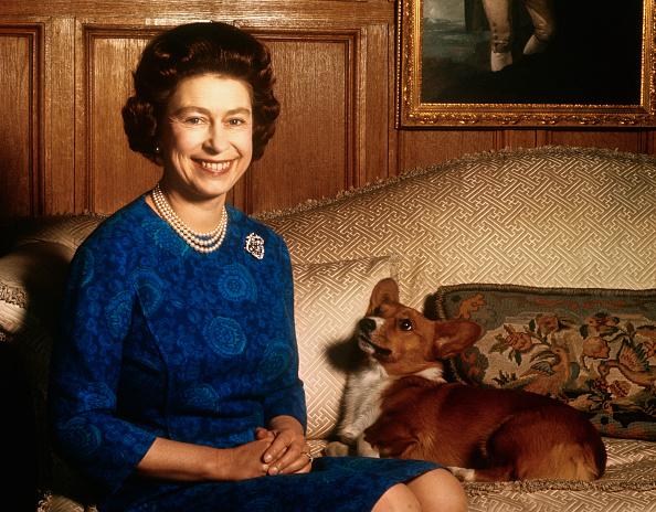Королева Елизавета и корги фото