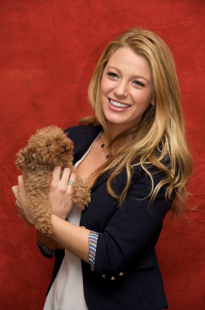 Mini-me: знаменитости и их крошечные собачки (часть 1)-Фото 5
