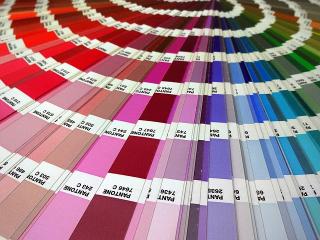 Институт цвета Pantone выпустил носки всех оттенков