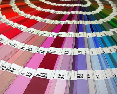 Институт цвета Pantone выпустил носки всех оттенков-430x480