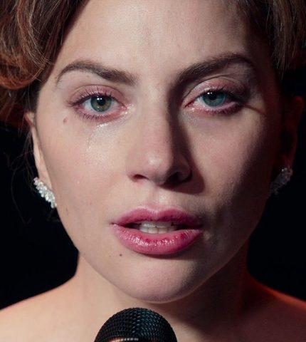 Леди Гага стала волонтером Красного Креста в Калифорнии-430x480