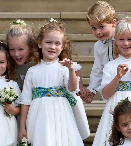 Давайте знакомиться: Сколько на самом деле правнуков у Елизаветы II?-430x480