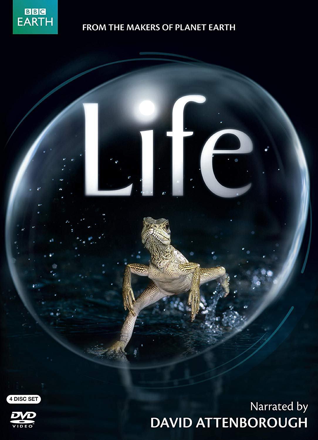 документальные фильмы жизнь