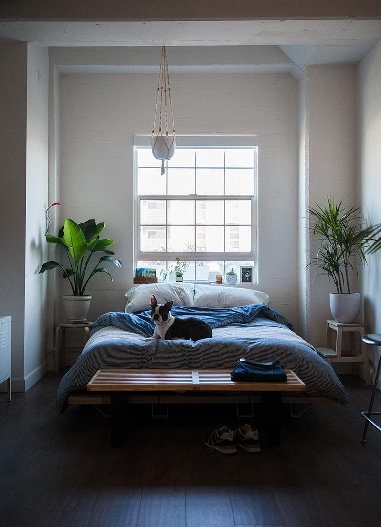 По фэн-шую: Как правильно обустроить свою спальню для хорошего сна-Фото 2