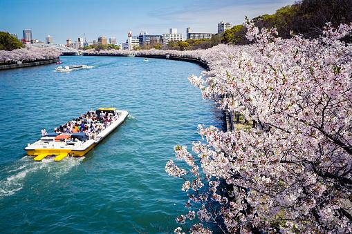 6 японских городов, которые стоит посетить-Фото 2