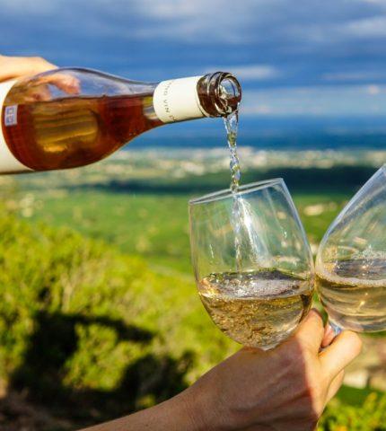 Полезные свойства белого вина: Что нам необходимо знать об этом-430x480