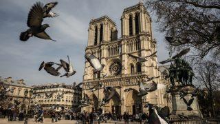 10 фактов о соборе Нотр-Дам-де-Пари-320x180