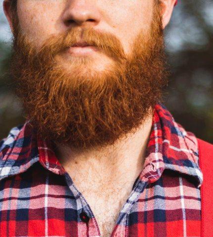 Говорит наука: женщины предпочитают мужчин с бородой-430x480