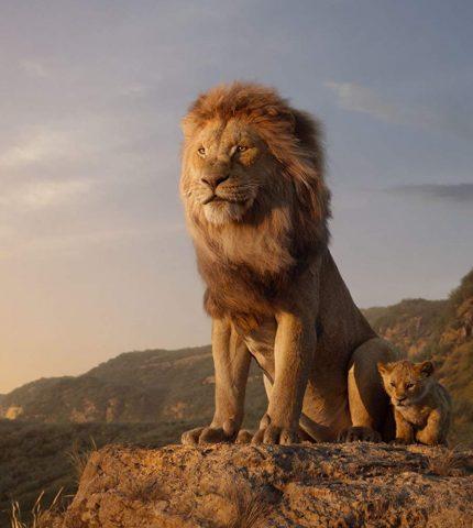 Ремейк «Короля Льва» — самый кассовый анимационный фильм в истории-430x480