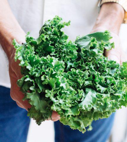 Как экономить деньги на продуктах и питаться полноценно-430x480