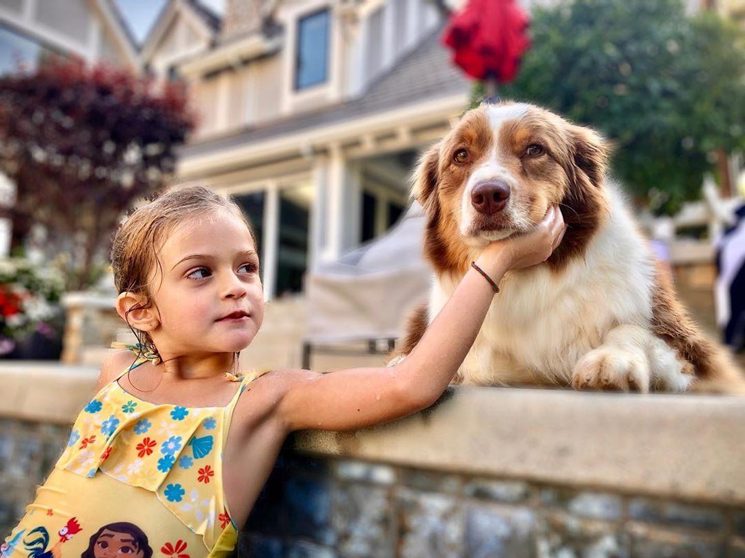 Милее не придумаешь: как американские знаменитости отпраздновали Национальный день собак-Фото 5