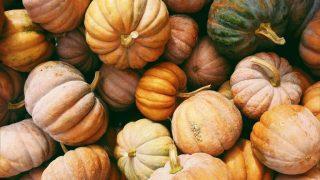 8 причин полюбить осень-320x180