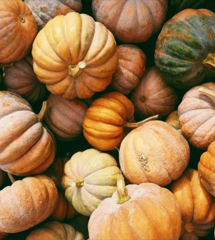 8 причин полюбить осень-430x480