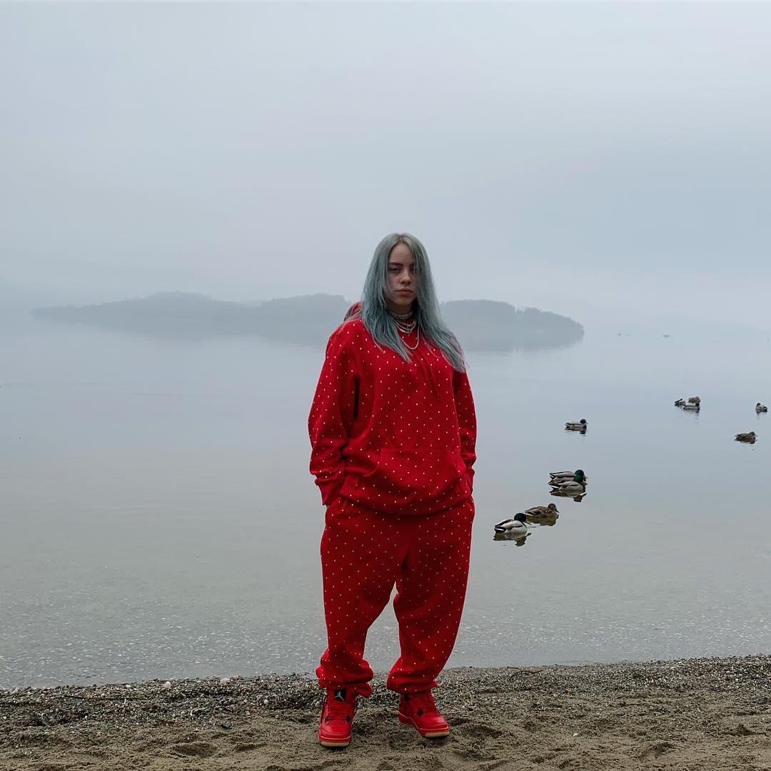 Билли Айлиш посвятит мировое турне проблемам экологии-Фото 1