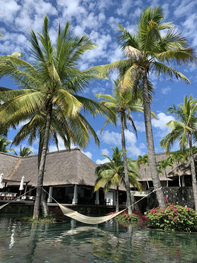 Личный опыт: что делать на Маврикии-Фото 8