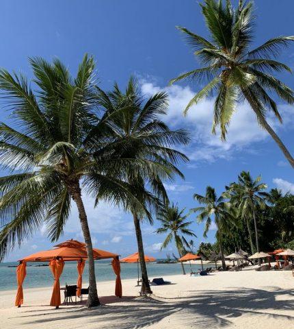 Личный опыт: что делать на Маврикии-430x480