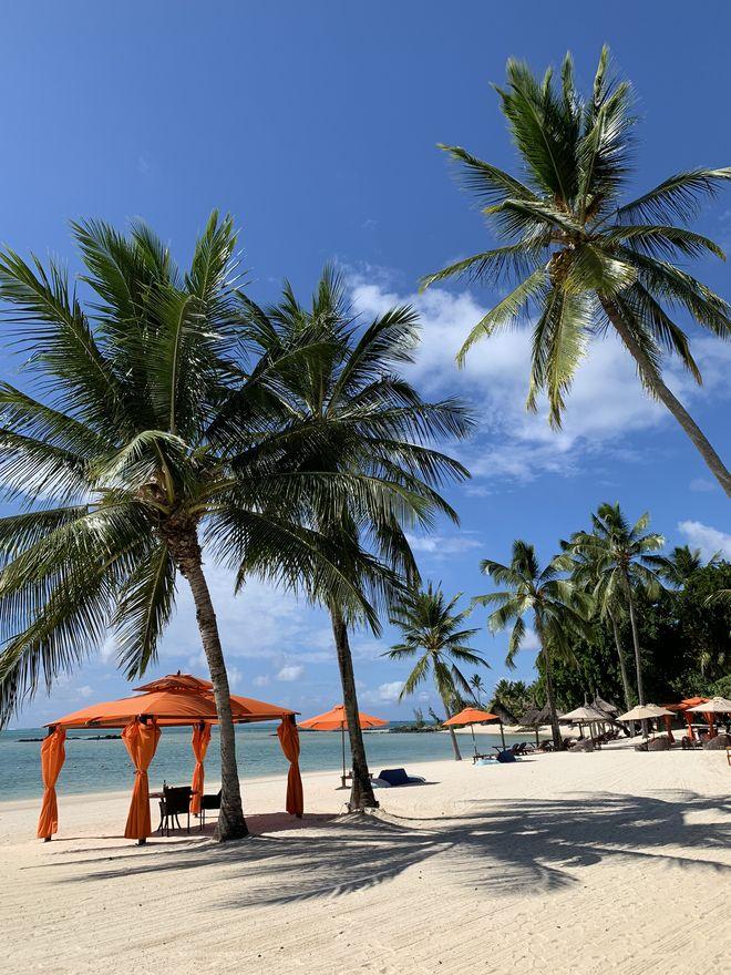 Личный опыт: что делать на Маврикии-Фото 2