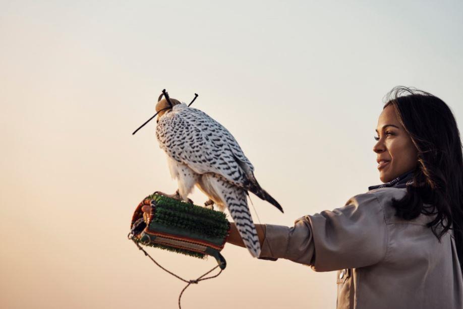 Гвинет Пэлтроу, Кейт Хадсон и Зои Салдана стали звездами фильма о Дубае «Полет истории»-Фото 3