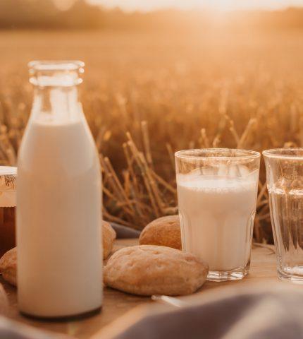 Что стоит знать о растительном молоке и какое выбрать-430x480