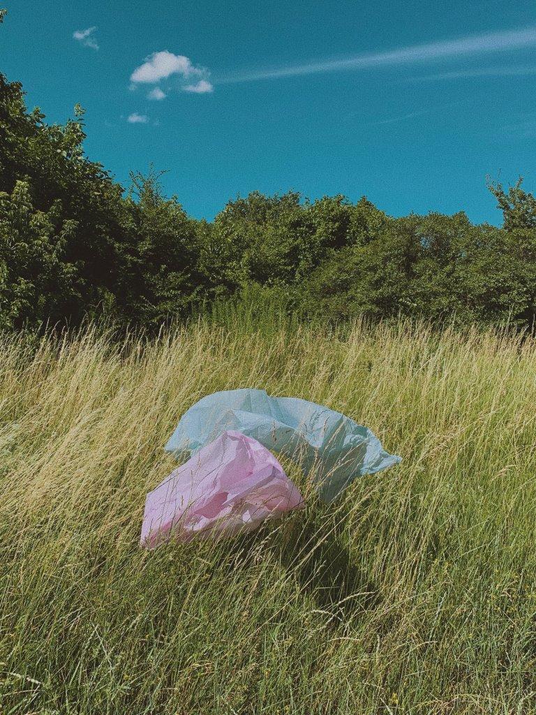 Итоги года 2019: как экология повлияла на мировоззрения людей-Фото 4