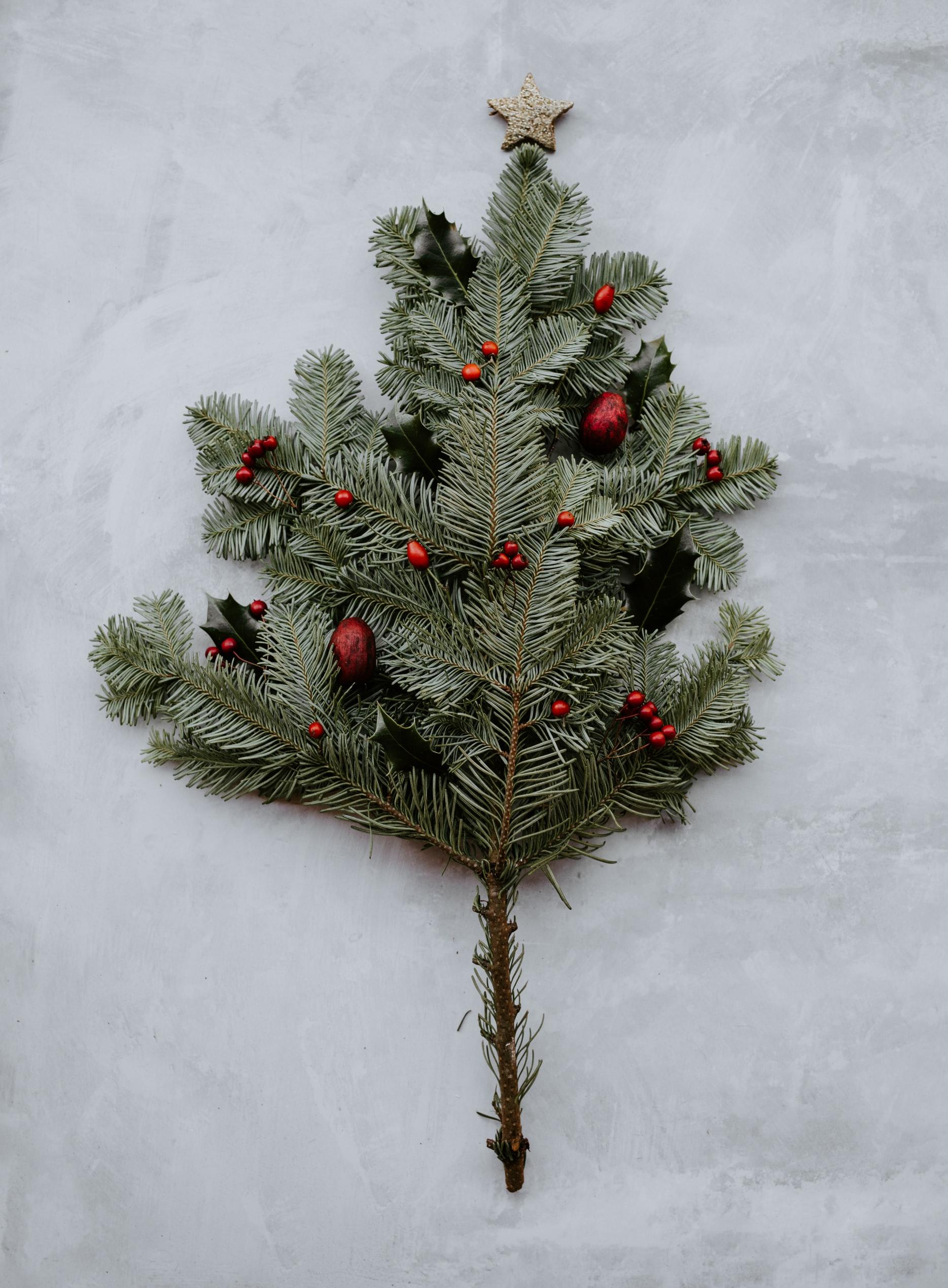 экологичная елка