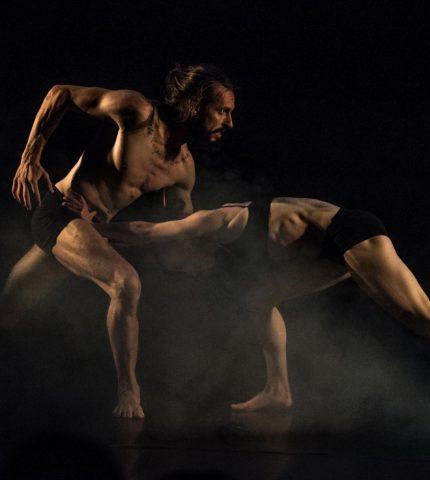 О команде, лучших постановках и сложностях Misanthrope Theatre-430x480