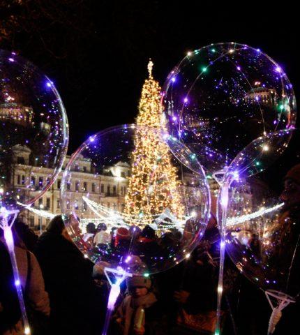Киевская елка стала одной из самых красивых в Европе-430x480