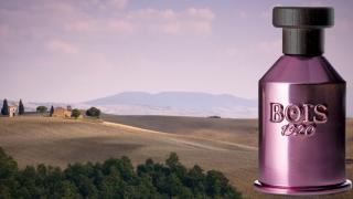 Что такое нишевые парфюмы и как их выбрать-320x180