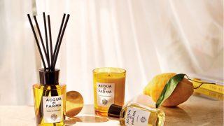 Учимся правильно использовать и выбирать ароматы для дома-320x180
