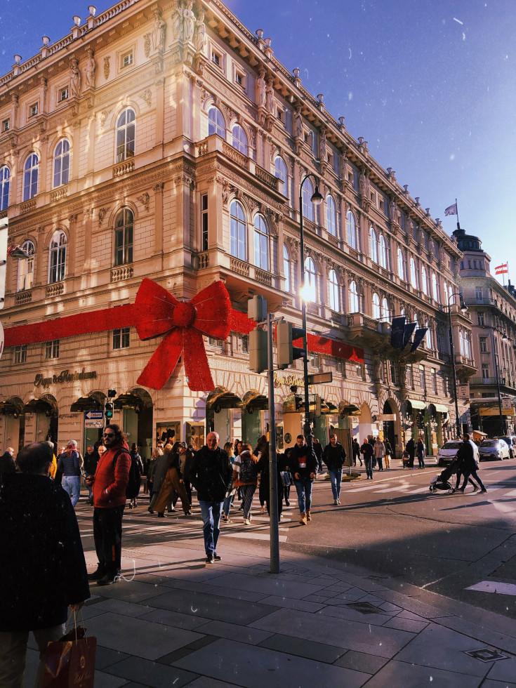 Карантин в Вене глазами украинки-Фото 2