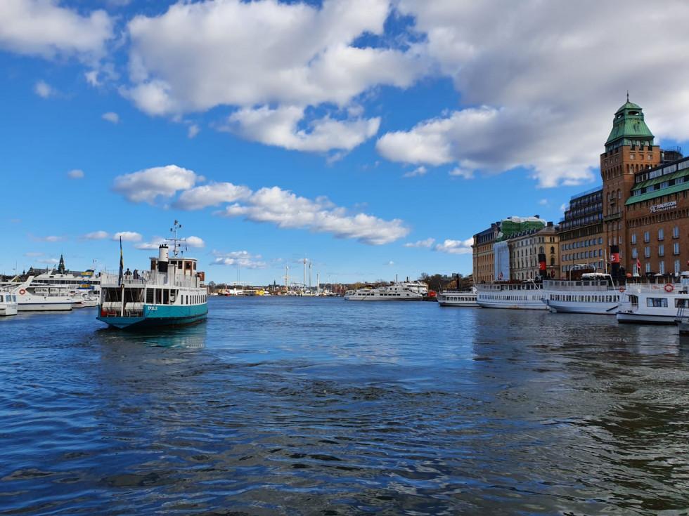 Из первых уст: что происходит в Швеции во время пандемии-Фото 7
