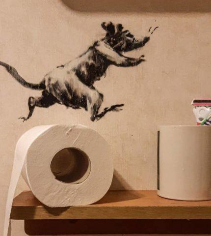 Ванну в арт-объект: художник Бэнкcи показал новую работу-430x480