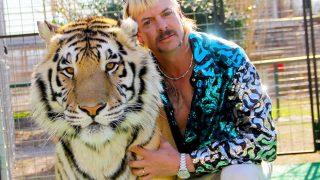 Почему стоит посмотреть безумный сериал «Король тигров» от Netflix-320x180