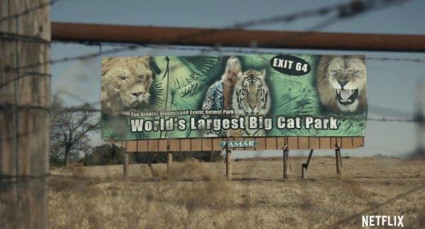 Почему стоит посмотреть безумный сериал «Король тигров» от Netflix-Фото 2