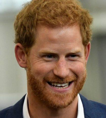 Принц Гарри представил первый благотворительный проект после лишения королевских полномочий-430x480