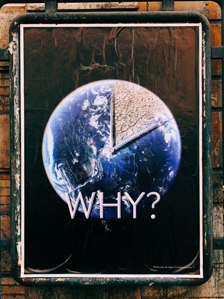 Уж кто бы говорил: насколько селебрити честны в своей борьбе за экологию?-Фото 5