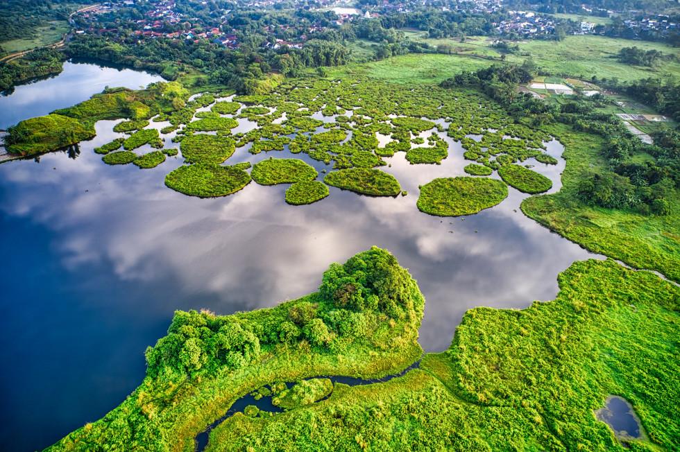 Все статьи Marie Claire про экологию и осознанность-Фото 5