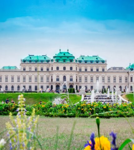 Вена стала самым чистым и зеленым городом мира-430x480