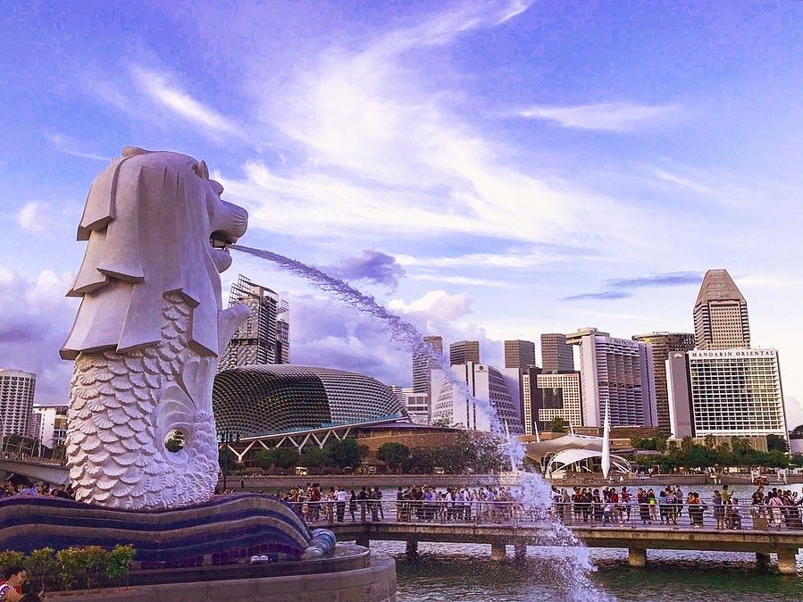 Сингапур коронавирус