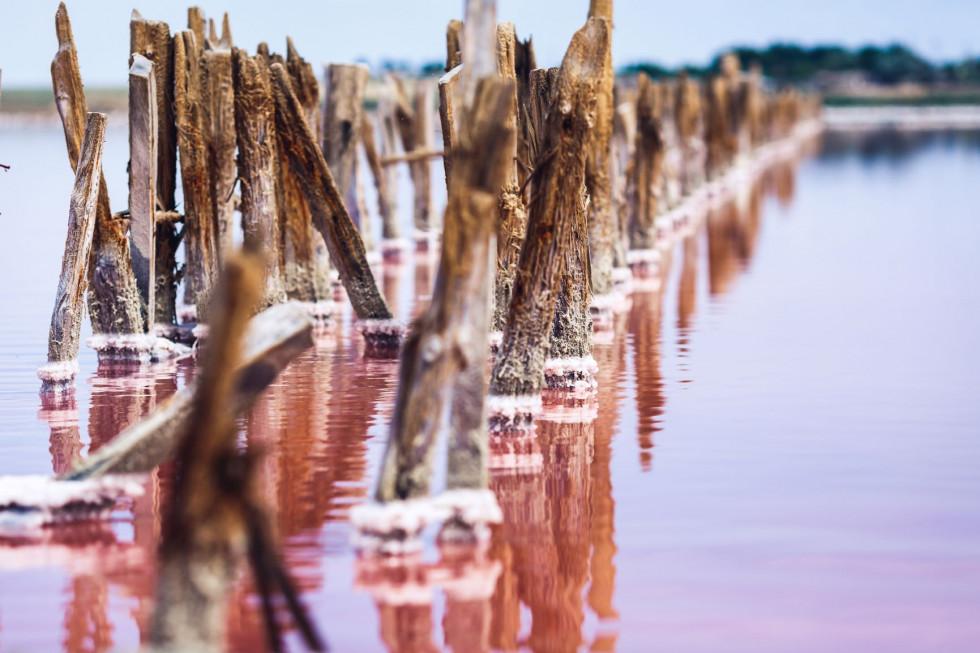 Розовые озера: как добраться и почему там стоит побывать-Фото 3