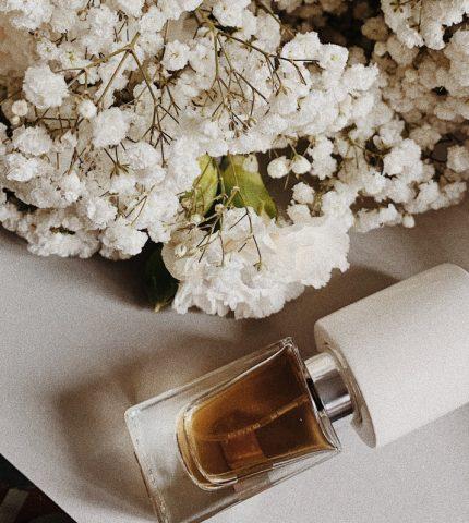 5 самых стойких парфюмов для тех, кто любит постоянство-430x480