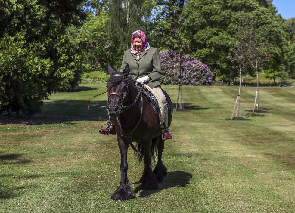 Королеву Елизавету II впервые с начала карантина сфотографировали на конной прогулке-Фото 2