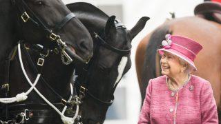 Королеву Елизавету II впервые с начала карантина сфотографировали на конной прогулке-320x180