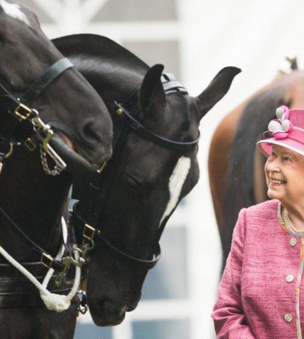 Королеву Елизавету II впервые с начала карантина сфотографировали на конной прогулке-430x480