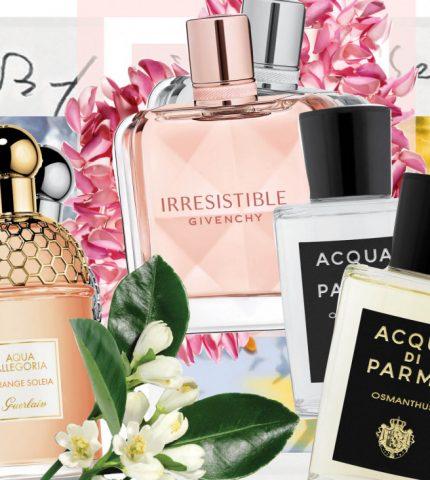 8 парфюмерных новинок для жаркого лета-430x480