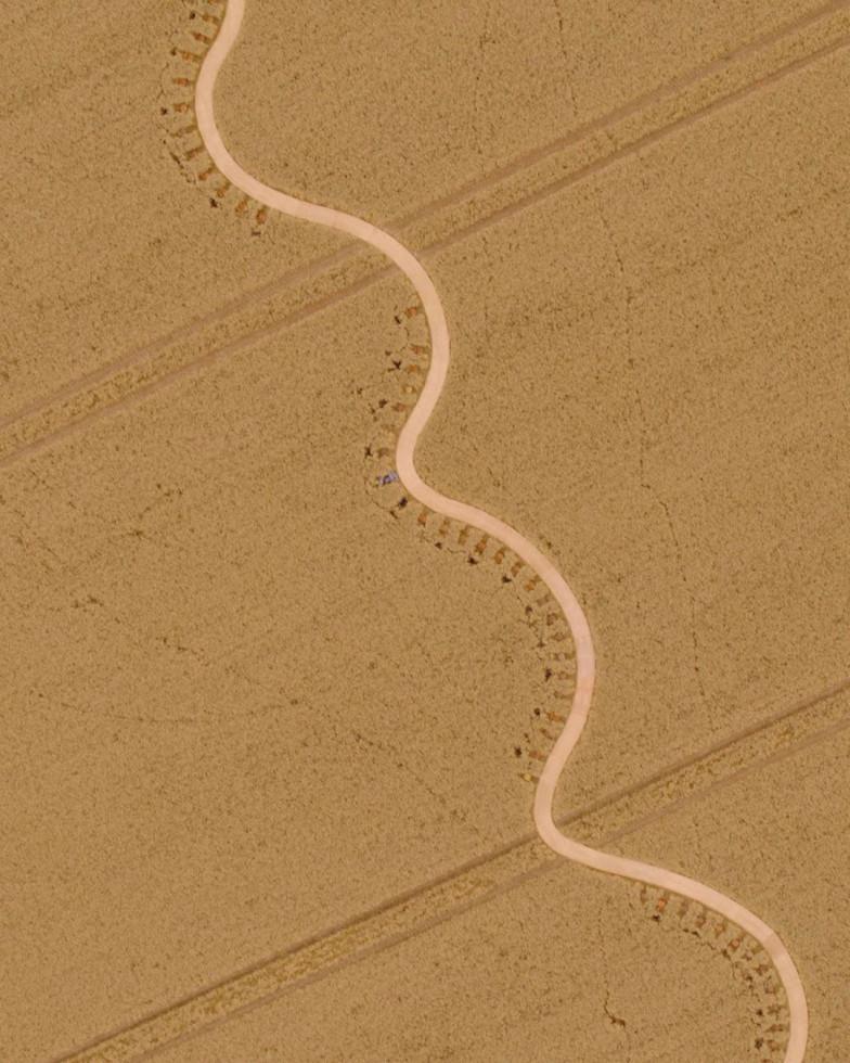 Jacquemus представили новую коллекцию в пшеничном поле-Фото 1