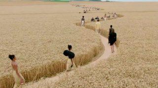 Jacquemus представили новую коллекцию в пшеничном поле-320x180