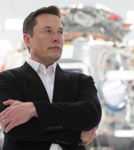 Илон Маск заявил, что Граймс играет «значительно большую роль» в воспитании сына-430x480