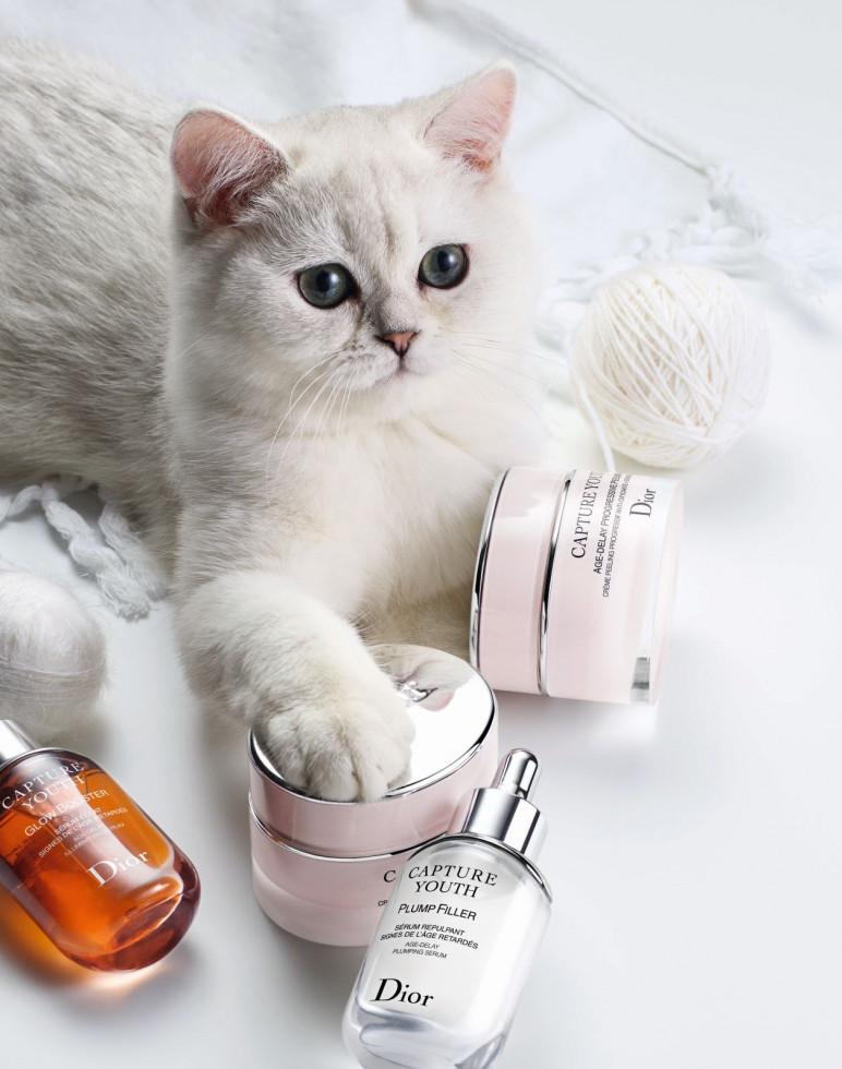 Что вам нужно знать о лимитированном бьюти-курсе от MUMA beauty academy?-Фото 2