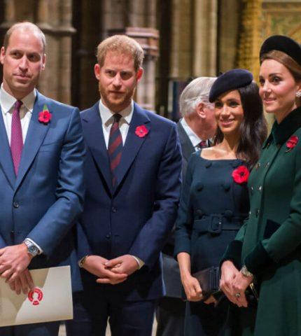 О чем жалеют принцы: Гарри рассказал, что не успел сказать матери в последнем разговоре-430x480